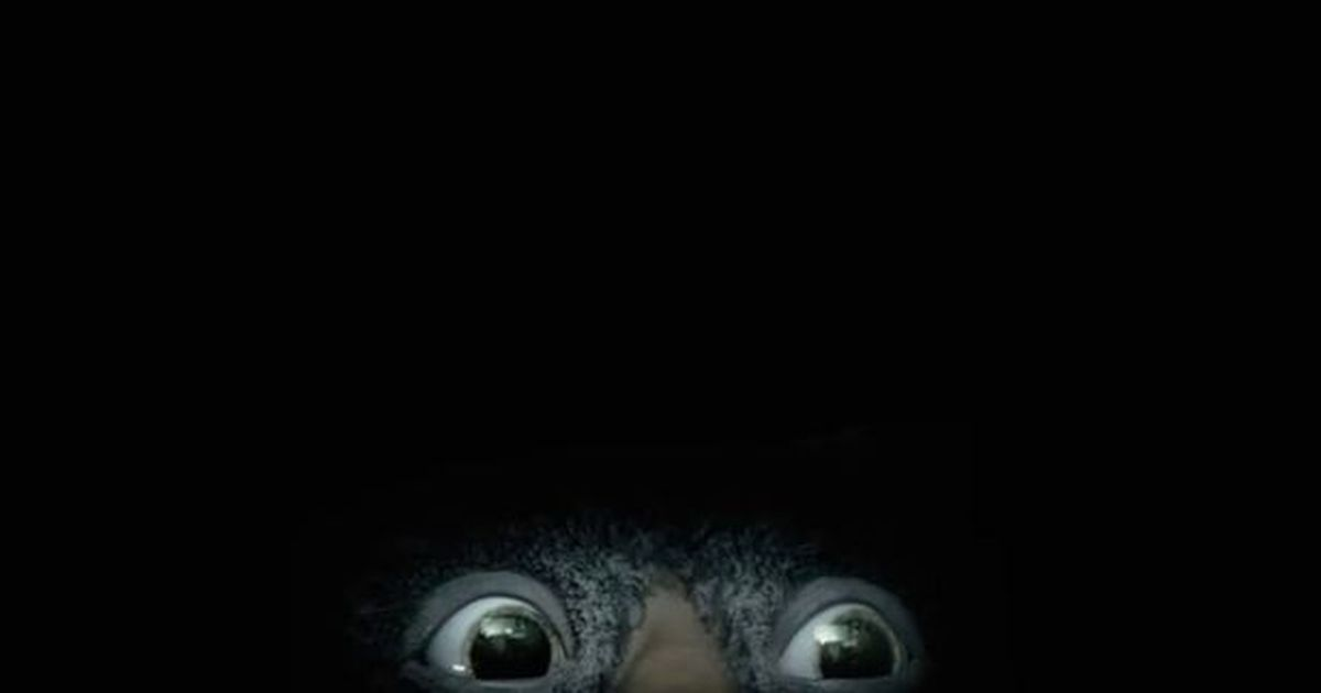 Under The Bed john lewis screenshot ad advert christmas