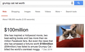 grumpy cat net worth